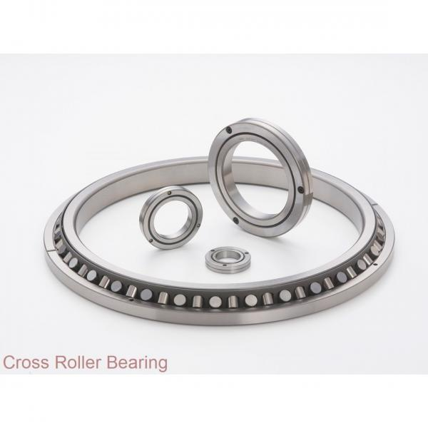 Bottling & Packaging Equipment Quenched Teeth Single Row 4 contact Points Slewing Bearing #1 image